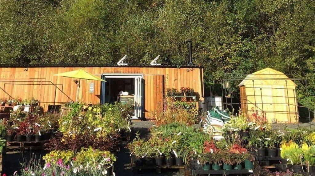 shipping container garden centre shop
